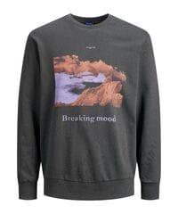 Мужские свитера, худи, свитшоты и кофты Jack Jones 13